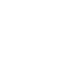 text-box_goal11_C